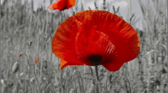 Première Guerre mondiale & cinéma : quelques réflexions
